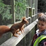 wildlife-centre-2